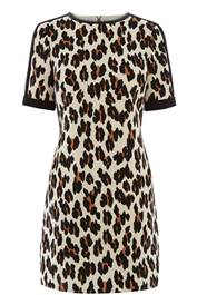 Leopard shift dress, £55, Oasis